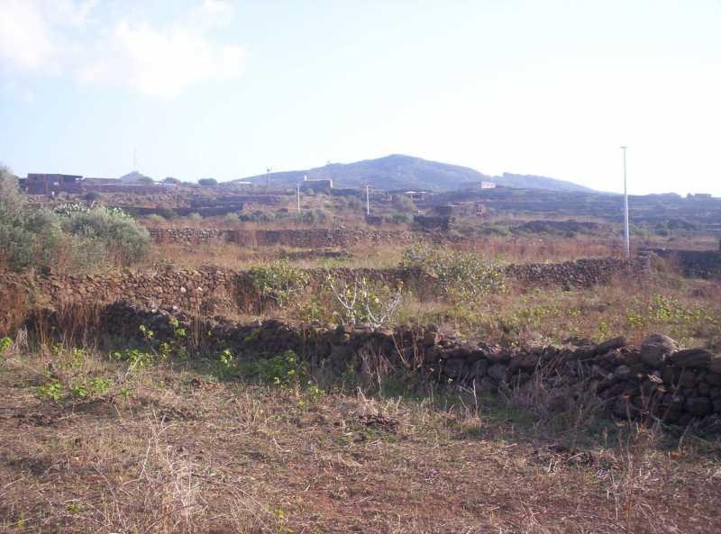 terreno in vendita a pantelleria dakale foto3-79666152