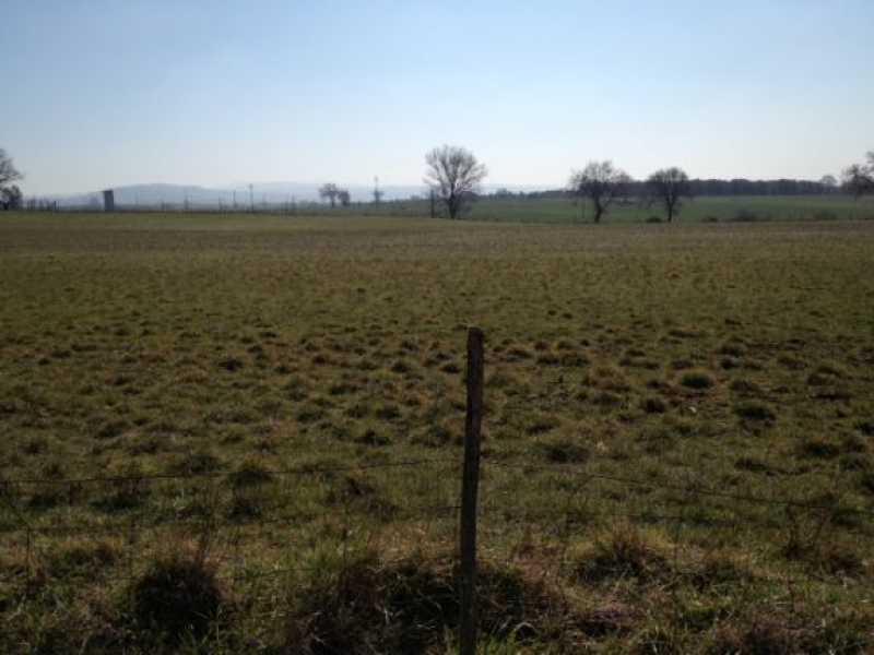 terreno agricolo in vendita a vetralla dogane foto2-79936170