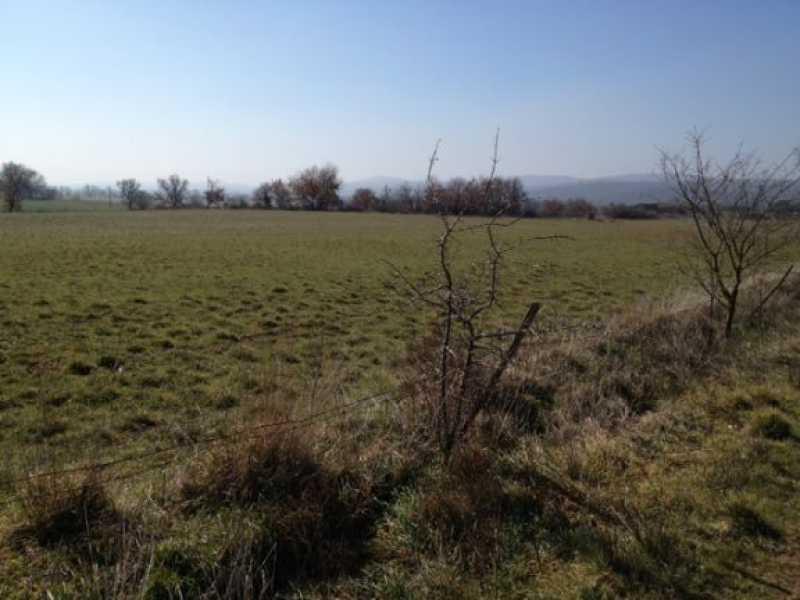 terreno agricolo in vendita a vetralla dogane foto3-79936170