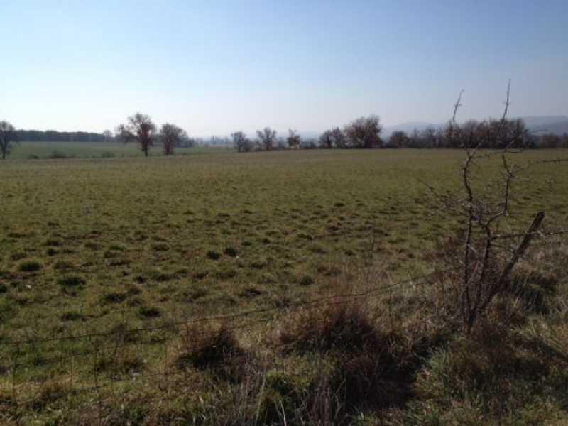 terreno agricolo in vendita a vetralla dogane foto4-79936170