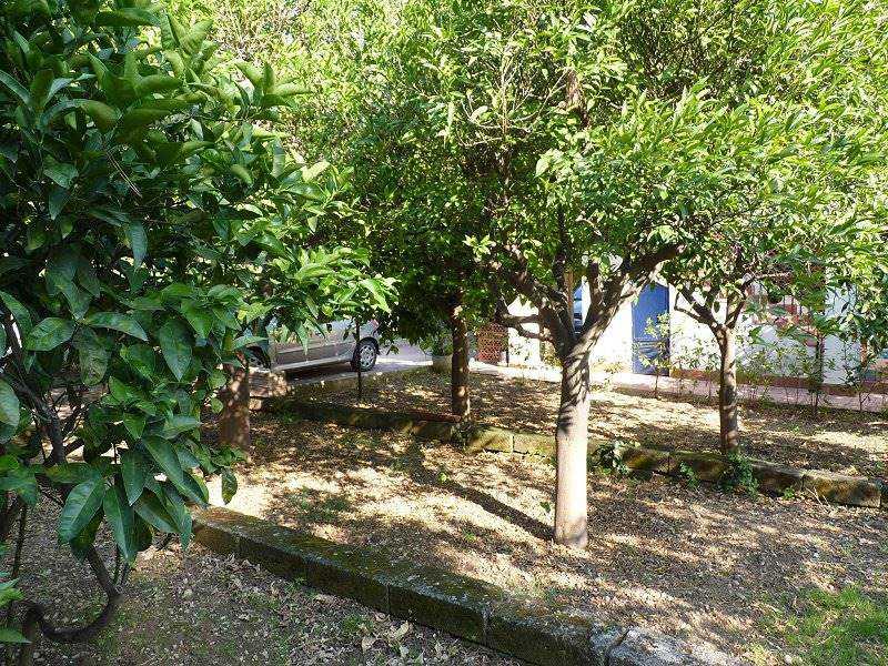 villa singola in vendita a siracusa fontane bianche foto4-80458051