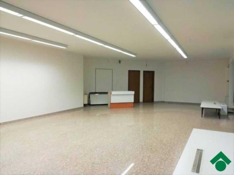 appartamento in affitto treviso montebelluna foto1-83185260