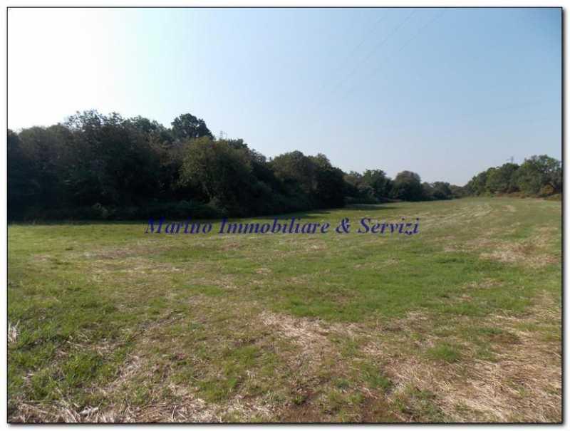 terreno in vendita a calvi risorta foto4-87362193