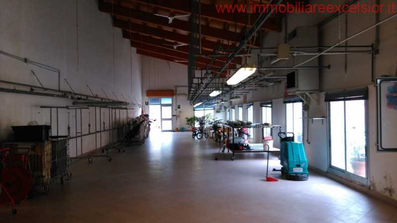 capannone in affitto a cavarzere boscochiaro foto2-88932990