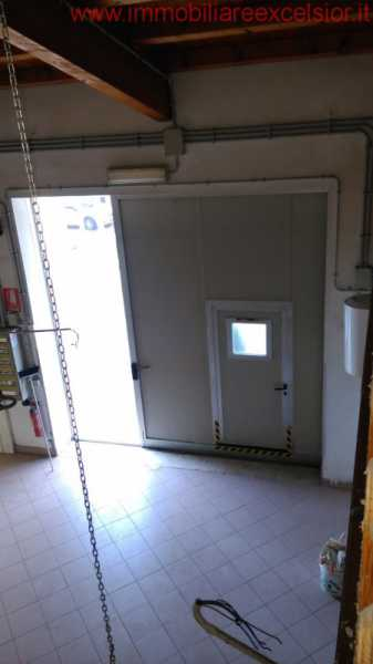 capannone in affitto a cavarzere boscochiaro foto3-88932990