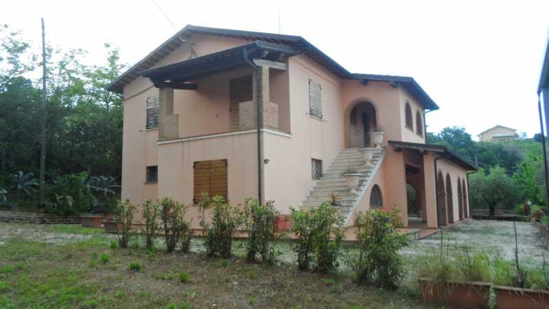 casa offida foto1-92576400