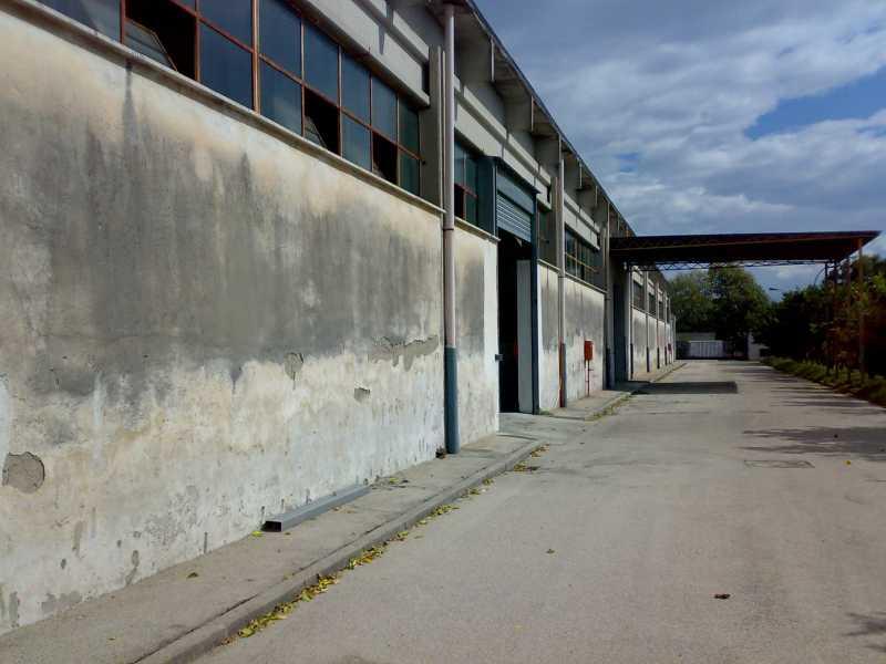 capannone in vendita a caivano localita` pascarola foto4-93036813