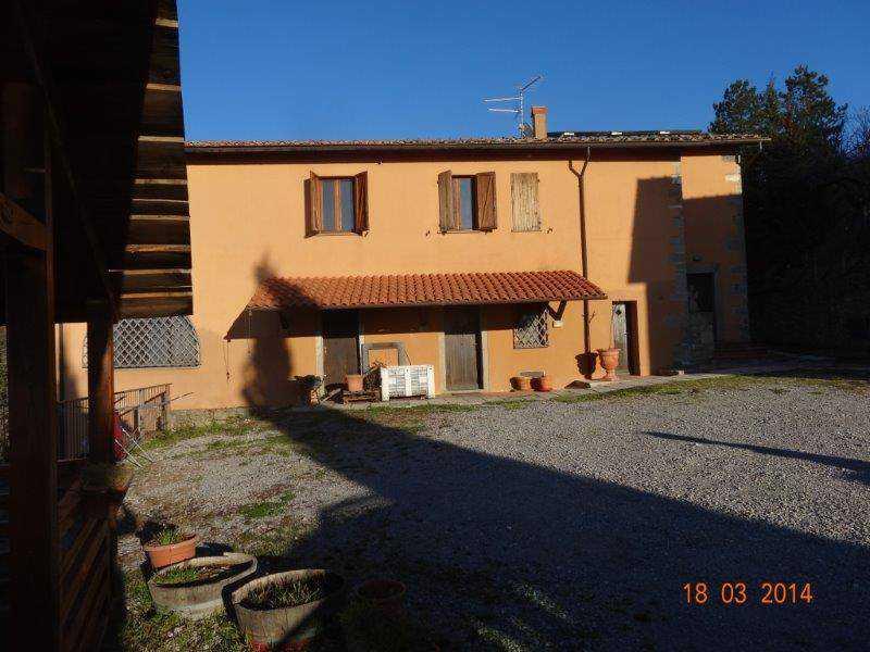 castel del piano grosseto foto1-93852090
