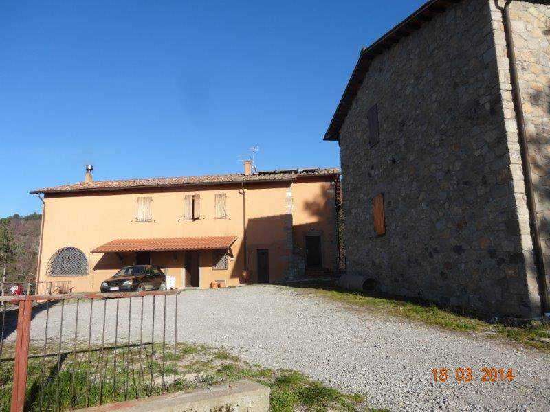 rustico casale corte in vendita a castel del piano monte amiata versante grossetano foto3-93852090