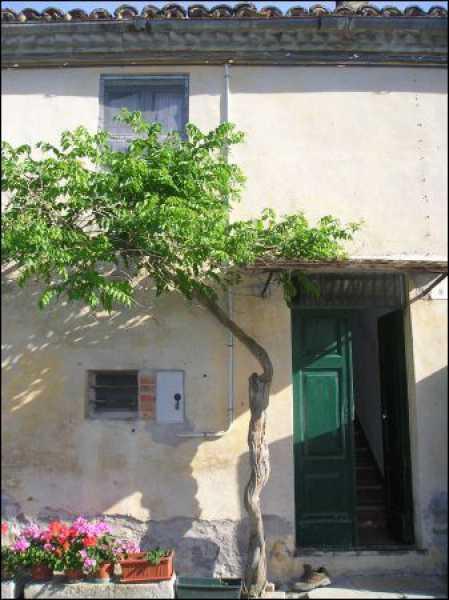 vendita case san paolo jesi foto1-93864271