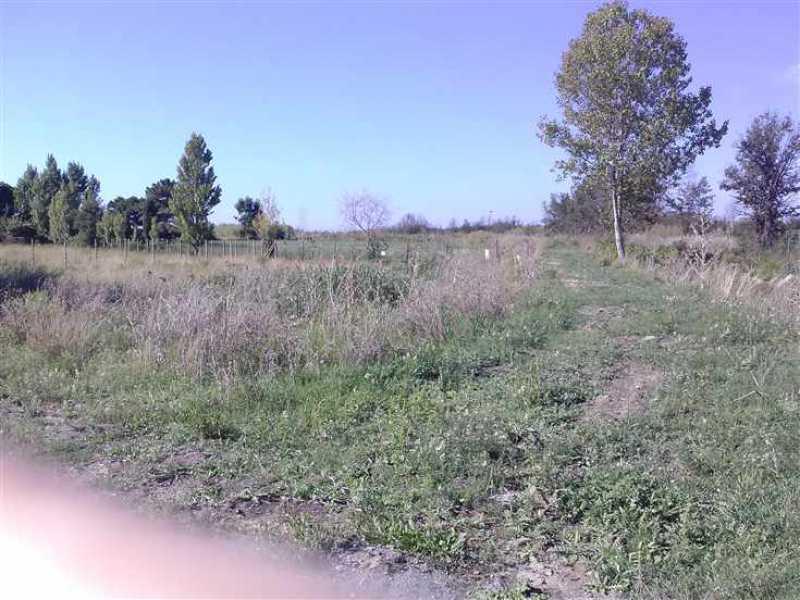 terreno viterbo vendita piano terra foto1-95196815