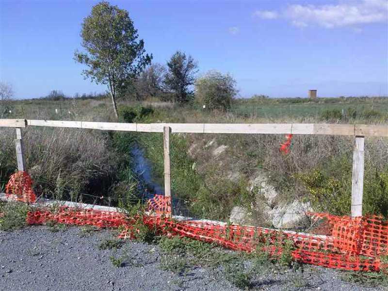 terreno agricolo in vendita a tarquinia foto2-95196815