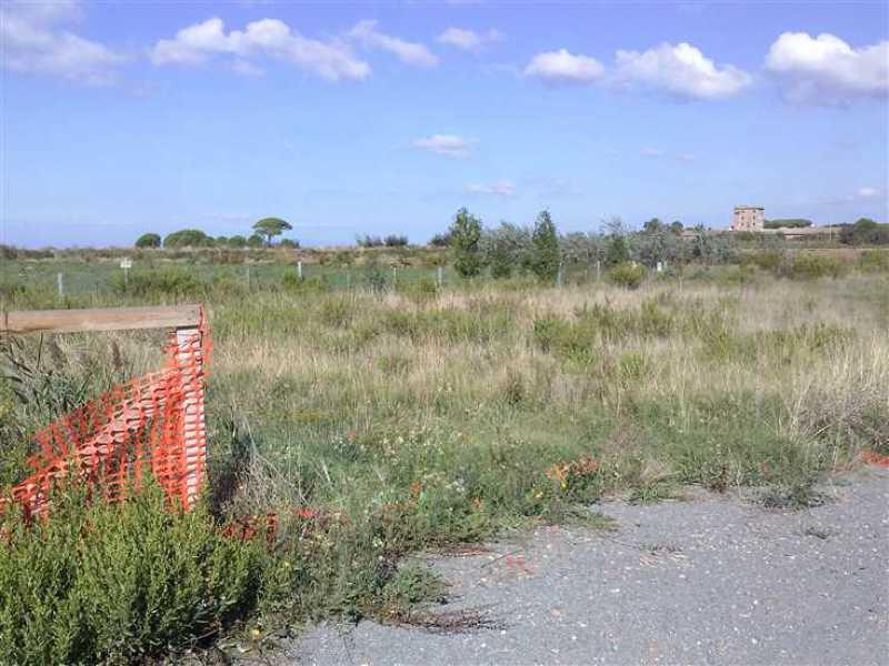 terreno agricolo in vendita a tarquinia foto3-95196815