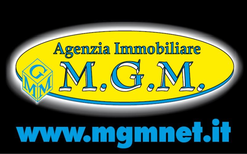 mgm bientina/s.maria a monte ag. immobiliare