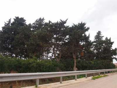 Terreno in Vendita a Petrosino