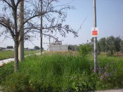 Terreno in Vendita a Cerignola, via Torre Quarto