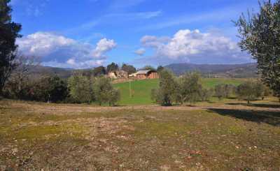 Azienda Agricola in Vendita a Riparbella