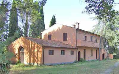 Azienda Agricola in Vendita a Gavorrano