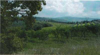Azienda Agricola in Vendita a Gambassi Terme