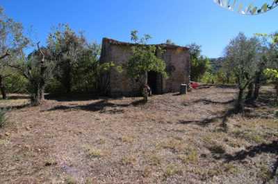 Rustico Casale in Vendita a Poggio Moiano via Delle Cave Osteria Nuova