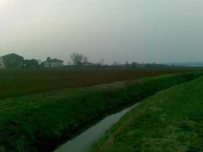 Azienda Agricola in Vendita ad Arcole