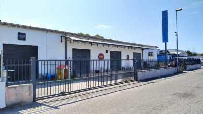 Laboratorio in Vendita a Latina Pantanaccio