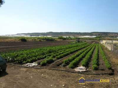 Azienda Agricola in Vendita a Pachino Pachino