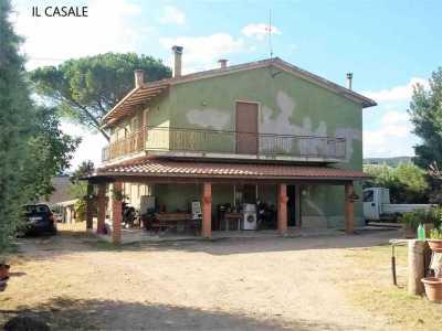 Azienda Agricola in Vendita a Scansano Pomonte