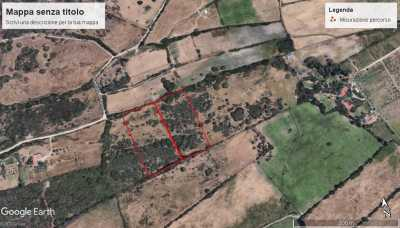 Terreno Agricolo in Vendita ad Olbia Cugnana