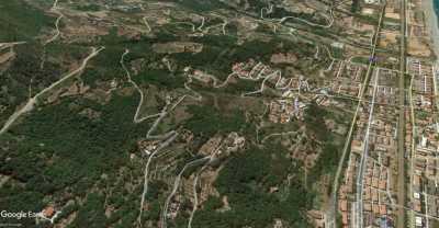 Terreno Agricolo in Vendita a Falconara Albanese Torremezzo
