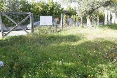 Terreno Edificabile in Vendita a Dipignano Laurignano