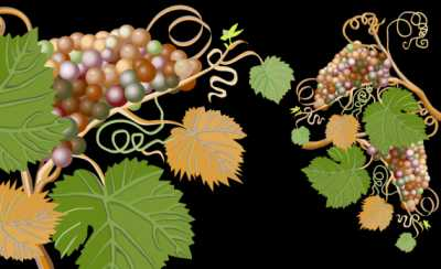 Agriturismo in Vendita a Desenzano del Garda