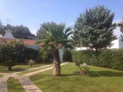 Villa in Affitto ad Ostuni via Carolina