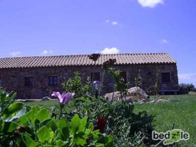 Bed And Breakfast in Affitto ad Olbia Localetà Spridda Localetà Spridda