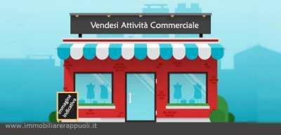 Attività Commerciale in Vendita a Viadana