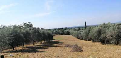 Terreno in Vendita a Roma via del Fosso di Valpignola Pantano Borghese