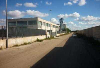 in Vendita a Sannicandro di Bari s p 184
