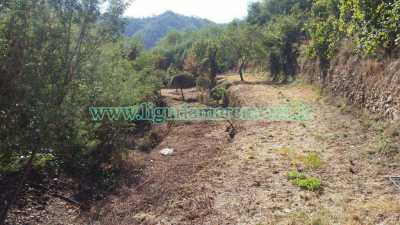 Terreno in Vendita a Savona via Monteprato Santuario