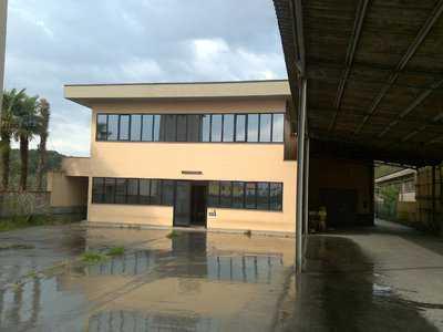 Capannone in Vendita a Lucca Lucca Direzione Est