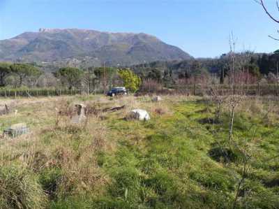 terreno agricolo in vendita a camaiore camaiore pontemazzori foto2