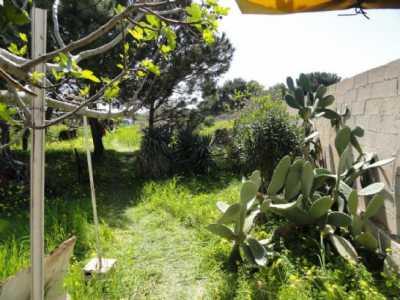 Terreno Agricolo in Vendita a Mola di Bari