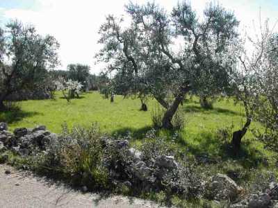 Terreno agricolo in Vendita a Crispiano