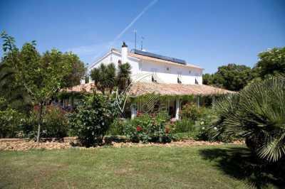 Villa Singola in Vendita a Rosignano Marittimo Nibbiaia Nibbiaia