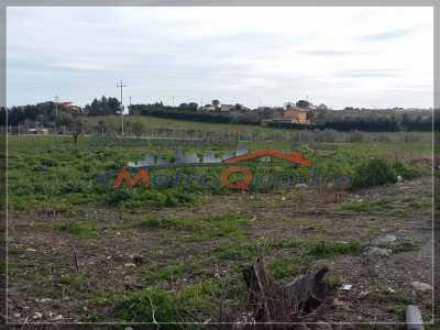 Terreno Agricolo in Vendita a Canicatt, d 6 Zona Uscita Delia