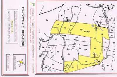 Terreno edificabile in Vendita a Cinigiano