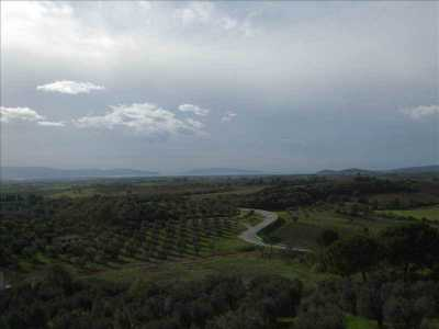 Semi Indipendente in Vendita a Magliano in Toscana