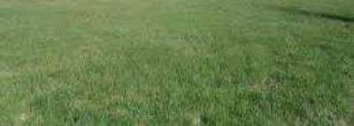 Terreno in Vendita a Gradisca D