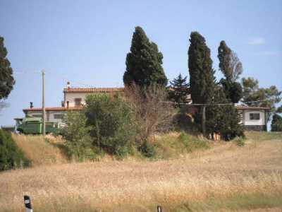Azienda Agricola in Vendita a Pomarance
