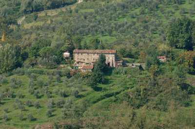 Rustico Casale Corte in Vendita a lucca colline