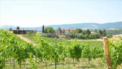 Azienda Agricola in Vendita a Chianciano Terme Strada del Cavernano